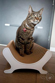 Griffoir design pour chat de la marque Cat-on - #deco #cat #chat #design #objet #interior #pet