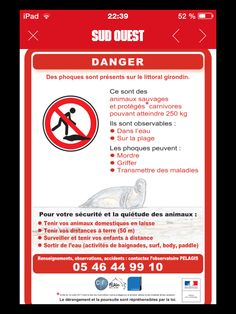 Attention : des phoques sur les plages girondines !