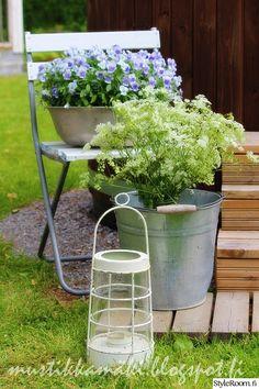 lyhty,piha,puutarha