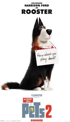 The latest trailer for Illumination's The Secret Life of Pets 2 features Harrison Ford's no-nonsense farm dog, Rooster. The Secret Life of Pets 2 opens on June Pets Movie, 2 Movie, Movie Cast, Lorax, Pete Holmes, Illumination Entertainment, Secret Life Of Pets, Kevin Hart, Harrison Ford