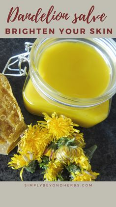 The dandelion salve is suitable for people with cracked and dry skin. It heals really quickly and gives a pleasant moisturizing effect. remedies baking soda remedies diy home remedies skin care remedies sore throat remedies treats Herbal Remedies, Natural Remedies, Natural Skin Care, Natural Health, Dandelion Oil, Dandelion Jelly, Dandelion Recipes, Cracked Skin, Natural Solutions