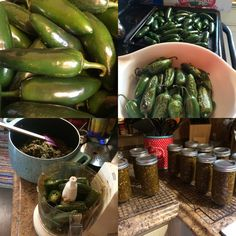 Over A great day to make roasted jalapeño relish! (Recipe in comments) : Canning Roasted Jalapeno Sauce, Jalapeno Relish, Mexican Dishes, Mexican Food Recipes, Jalapeno Recipes, Pepper Recipes, Hatch Chili, Great Recipes, Favorite Recipes