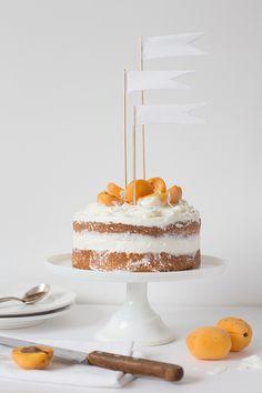 gluten free coconut apricot cake