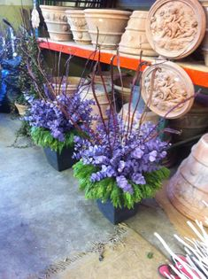 Winter Containers: lavender eucalyptus featured in this one.