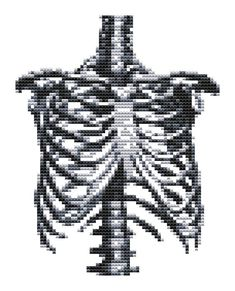 Cross stitch Kit - Rib Cage - Modern Cross Stitch - DMC Materials