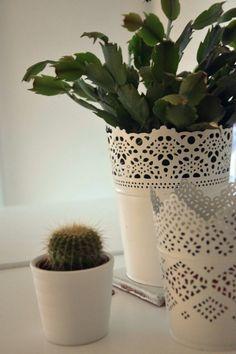 Cactus in my bedroom. #cactus #simple #decoration #diy #bedroom