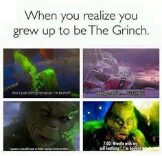 When you realize you grew up to be the grinch Crazy Funny Memes, Funny Relatable Memes, Funny Posts, Funny Quotes, Relatable Posts, Bored Meme, Im Bored, Grinch Memes, The Grinch Meme