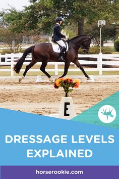 Within each National dressage level (USDF), there are three tests. They progress in level of difficu Andalusian Horse, Friesian Horse, Arabian Horses, Palomino, Horse Behavior, Horse Riding Tips, Western Riding, Black Horses, Horse Quotes