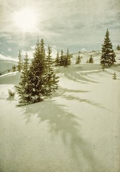 winter shadows in Colorado