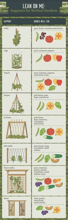Vertical gardens are a great way to create micro gardens either indoors or out, and can be used to grow all sorts of plants. Here are the 11 Best Ideas. #GardeningIdeas