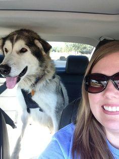What rescue feels like!   Loretta en route to Taysia Blue rescue