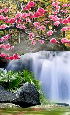Cherry blossoms by a waterfall Cool Landscapes, Beautiful Landscapes, Beautiful Gardens, Beautiful Flowers, Animals Beautiful, Nature Pictures, Beautiful Pictures, Landscape Photography, Nature Photography