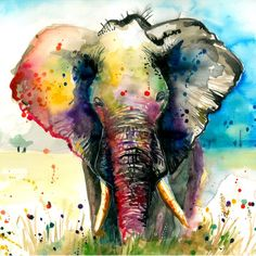 Majestic Elephant - Art Photo Print After My Original Watercolor Painting Museum Quality Rainbow Watercolor Sunflower, Watercolor Paintings, Watercolor Tips, Watercolours, Elephants Photos, Elephant Art, Elephant Watercolor, Africa Art, Fine Art America