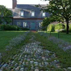 Visited our East Hampton project yesterday. It's hard to believe it's only four years old. I love how the thyme does not grow where it has been walked on regularly exactly as I wanted it