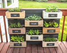 Last year's growing season was surprisingly a success. I decided this year to make my wall planter into an herb garden. I made painted plywood labels and screwed them into each box. O… herb garden diy wall vertical planter Herb Garden Planter, Herb Garden Design, Diy Herb Garden, Herb Planters, Garden Boxes, Balcony Garden, Palette Herb Garden, Herb Gardening, Herbs Garden