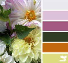 Flora tones living with color color schemes, color pallets и Colour Pallette, Colour Schemes, Color Combos, Color Patterns, Design Seeds, World Of Color, Color Of Life, Beautiful Color Combinations, Color Swatches