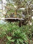 Malpais Vacation Rental - VRBO 322363ha - 1 BR Malpais Area Cabin in Costa Rica, A Cozy Romantic Tree House with Pool & Only 3 Min. Walk to Beach! $95/nt