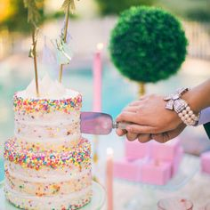 We love wedding cakes! We have everything from the latest trends (bye naked cakes!), to the flavors everyone is loving, expert tips and thousands of beautiful wedding cakes to inspire you. Pretty Cakes, Cute Cakes, Beautiful Cakes, Amazing Cakes, Sprinkle Wedding Cakes, Sprinkle Party, Cake Cookies, Cupcake Cakes, Funfetti Cookies