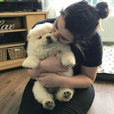 Dog Breeders Puppies For Sale Nsw any Dog Breed Puppies Best not Cute Cartoon Animals To Draw Step By Step below Cute Pictures Of Animals To Draw Step By Step Cute Cartoon Animals, Cute Baby Animals, Animals And Pets, Funny Animals, Cute Dogs And Puppies, Baby Dogs, I Love Dogs, Doggies, Chubby Puppies
