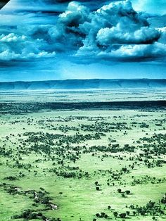 Spying on Cheetahs in Tanzania's Serengeti National Park | The Lamai Triangle, seen from the air.