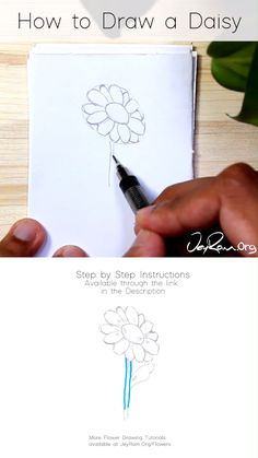Drawing Step By Step Videos Tattoo Daisy Drawing, Simple Flower Drawing, Easy Flower Drawings, Flower Drawing Tutorials, Floral Drawing, Art Tutorials, Flower Art, Drawing Flowers, Draw Tutorial