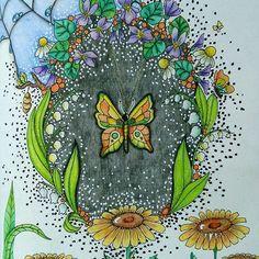 #adultcoloringbook #antistress #antistresoveomalovanky #colourbook #coloringbook #klaramarkova #carovnelahodnosti #kohinoor #progresso #buterfly #relax #wip #omalovanky