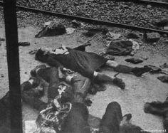 www.trenidicarta.it - Treno 8017 - Articoli di Giulio Frisoli - L'Europeo - 11, 18 e 25 marzo 1956