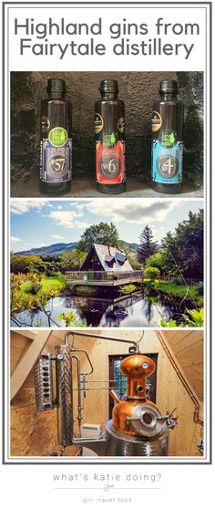 Highland gins from Fairytale distillery in Scotland Scottish Gin, What Katie Did, Fairytale House, Gin Tasting, Gin Gifts, Gin Recipes, London Dry, Gin Lovers, Citrus Oil