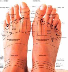 En los pies, se ven marcadas las tendencias, los pensamientos recurrentes; si estos son positivos, las marcas mostrarán que son para beneficio de los pies.