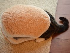 blue-author:  thenimbus:  Cat Burger  WELCOME TO CAT BURGER HOME OF THE CAT BURGER MAY I TAKE YOUR CAT