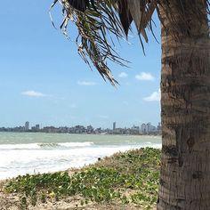 O paraíso é aqui! ☀️🌴#semfiltro #comamor