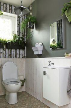 Faire entrer le jardin dans les WC