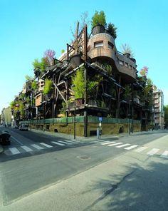Il Giornale dell'Architettura - Torino. Una «Casa Sull'Albero» O Un Albero Dentro Una Casa?