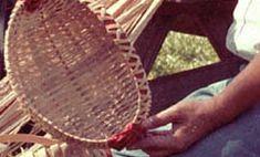 Louisiana Indians In The 21st Century