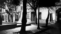 La Plaza Dorrego, por la lente de Juan Di Sandro. Circa 1950. Photomontage, Black And White Photography, Sandro, Couple Photos, Artwork, Plants, Lighting, Image Editing, Urban Landscape