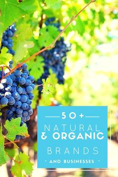 Here's a complete list of natural and organic brands and businesses for a healthy lifestyle.  Includes organic foods, organic beauty products, organic household cleaning products, organic makeup, mattresses, essential oils, and vitamins and supplements.