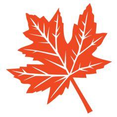 fall-leaf-0917