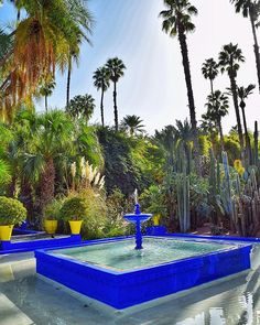 Jardins Majorelle, Central Fountain and Palm Trees - Marrakech - Morocco Visit Marrakech, Marrakech Morocco, Marrakesh, Morocco Travel, Her World, Rest Of The World, North Africa, Beautiful Gardens, Fountain