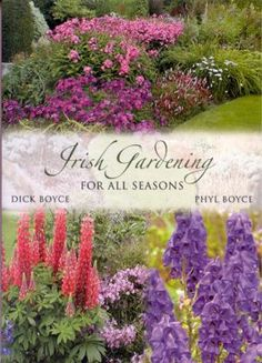 Irish Gardening for All Seasons - A great book to learn how to design an Irish-inspired garden with year-round interest.