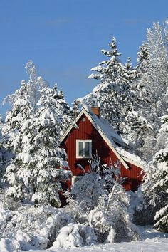 Prachtige sneeuw in Zweden, zeer typerend in combinatie met de rode huisjes. #Zweden #sneeuw #winter