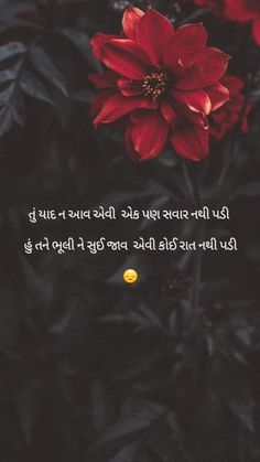 Hubby Love Quotes, Special Love Quotes, Love Picture Quotes, Cute Love Quotes, Good Life Quotes, Best Friend Quotes, New Quotes, Girl Quotes, Indian Quotes