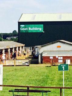 My favourite building! Yorkshire, Goats, England, Building, Outdoor Decor, Pictures, Home Decor, Photos, Decoration Home