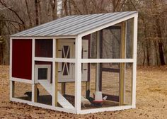 Construct a beautiful and efficient backyard coop to suit any style—from fancy to rustic—with these step-by-step instructions.