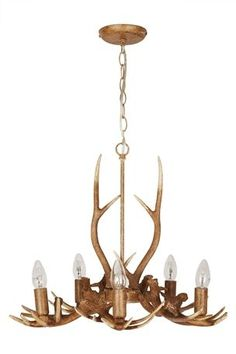 Antler Light, Next - didn't think I'd want this kind of thing, but looked good in store