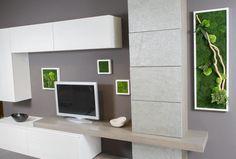 Semplici elementi decorativi, quadri o pareti vegetali: con il verde stabilizzato si possono realizzare composizioni vegetali che non hanno bisogno di acqua