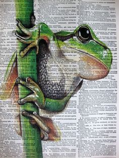 Green Tree Frog ORIGINAL ARTWORK Mixed Media art by sherryannshop