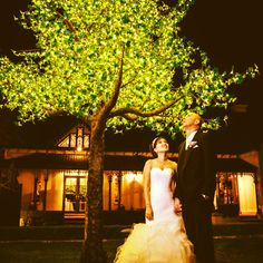 Our brand new maple tree out with over 5 thousand fairy lights ! Marry in a world of your own  #sydneyweddingvenue #dreamvenue www.lauristonhouse.com.au