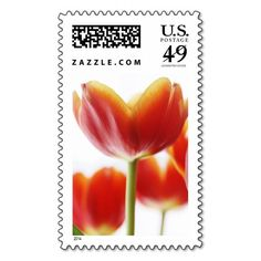 Add stamps to all your different types of stationery! Find rubber stamps and self-inking stamps at Zazzle today! Custom Postage Stamps, Self Inking Stamps, Address Labels, Tulips, Photograph, Stationery, Gems, Orange, Photography