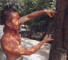 Shaolin monk technique repetitious training years to strengthen and possess many years of physical and mental ability to gain any Shaolin Kungfu training from the real Shaolin Monks themselves.
