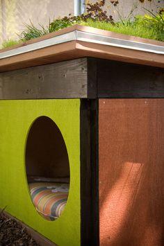 Modern Cabana for Dogs